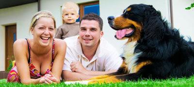 Tierhaltungsversicherung